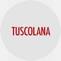 tuscolana, mangiare a roma, ristorante a Roma, ristoranti di Roma